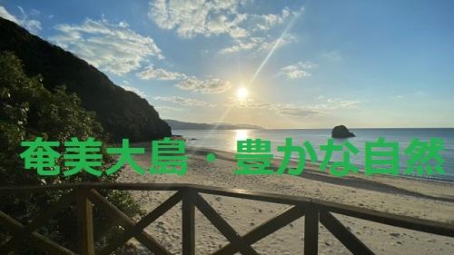 今日4月14日は旧暦で【サンガツサンチ】3月3日!奄美大島では全員が海に行く
