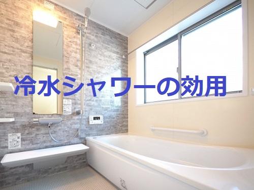 【水浴び】入浴後に冷たいシャワーのススメ!今が始め時タイミングを逃さずに